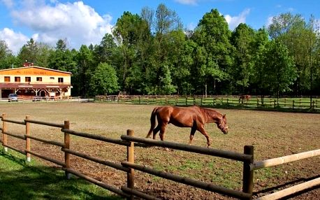 Chatky a sruby s polopenzí na ranči Bučiska