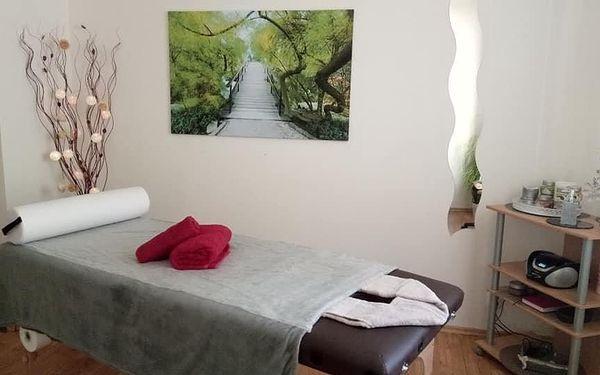 Ruční lymfatická masáž (60 minut)5