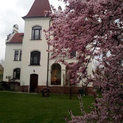 Lázně Bechyně, Jihočeský kraj: Villa Liduška