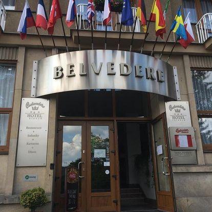 Příbram, Středočeský kraj: Hotel Belvedere Příbram
