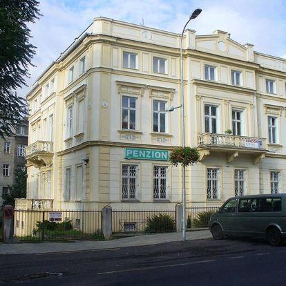 Teplice, Ústecký kraj: Dexter