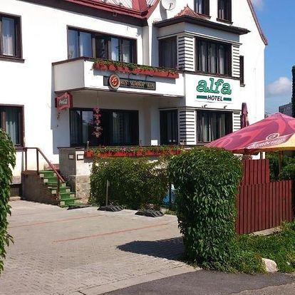 Trutnov, Královéhradecký kraj: Hotel Alfa