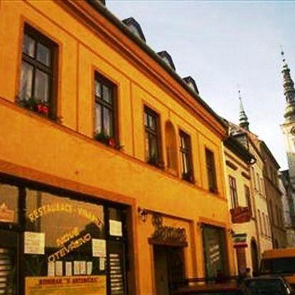 Prostějov, Olomoucký kraj: Penzion u Antonicka