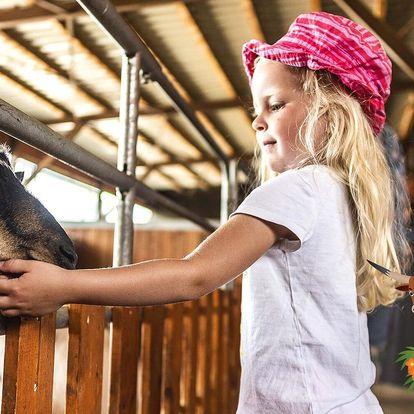 Rodinné vstupenky do Farmaparku plného zábavy