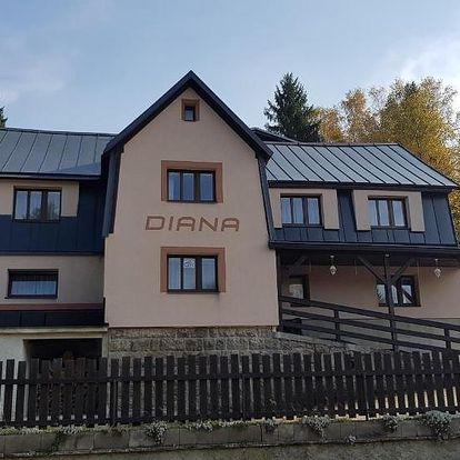Bedřichov, Liberecký kraj: Penzion Diana