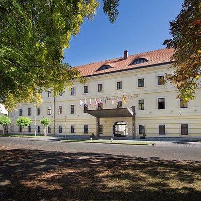 Česká republika, Hradec Králové, vlastní dopravou na 8 dní snídaně