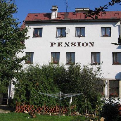 Dvůr Králové nad Labem: Pension Doctor