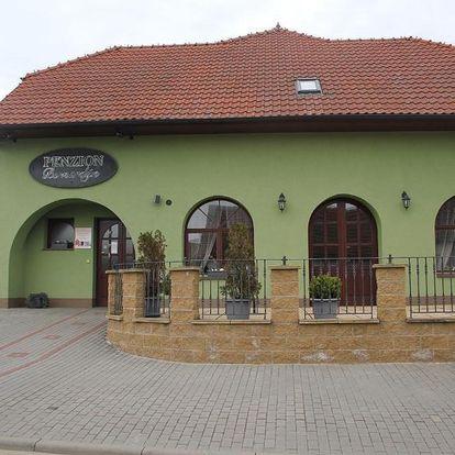 Bořetice, Jihomoravský kraj: Penzion Bernardýn