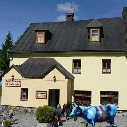 Česká republika, Krušné hory, vlastní dopravou na 8 dní snídaně