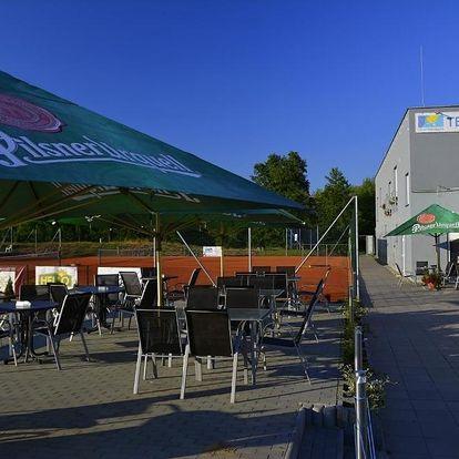 Jižní Morava: Apartmány Rybníček