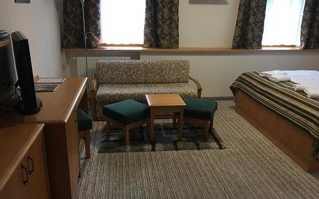 Chomutov, Ústecký kraj: ForRest hotel