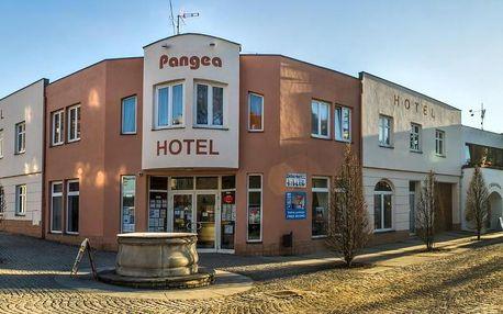 Telč, Vysočina: Hotel Pangea