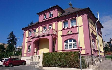 Domažlice, Plzeňský kraj: Pension Viola