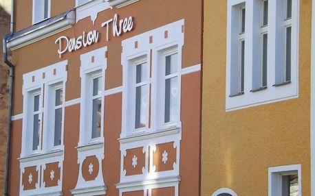 Františkovy Lázně, Karlovarský kraj: Pension Three