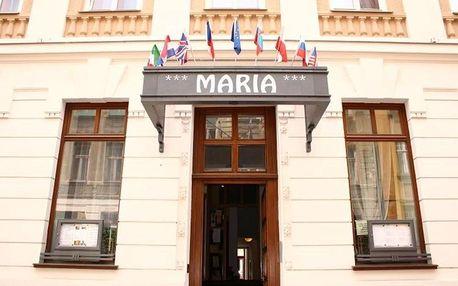 Ostrava, Moravskoslezský kraj: Hotel Maria
