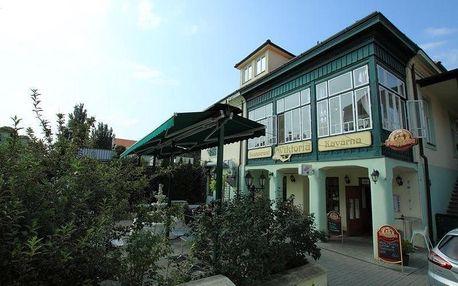 Znojmo, Jihomoravský kraj: Penzion Viktoria