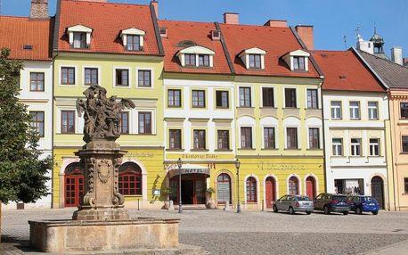 Hradec Králové, Královéhradecký kraj: Hotel U Královny Elišky