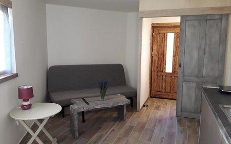 Příbram, Středočeský kraj: Apartman Na Horách