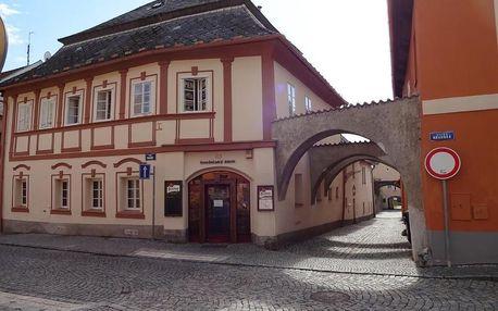 Domažlice, Plzeňský kraj: Penzion Konselsky Senk