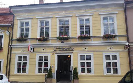 Mělník, Středočeský kraj: Hotel U Císaře