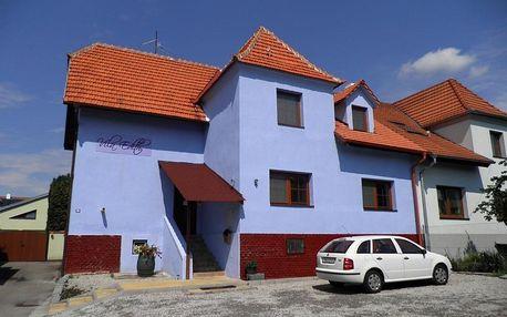 Valtice, Jihomoravský kraj: Penzion Vila Edith Valtice