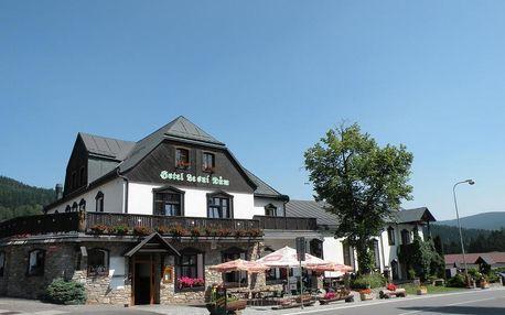 Janské Lázně, Královéhradecký kraj: Hotel Lesní dům