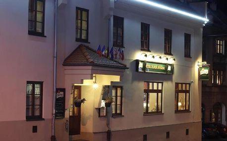 Šumava: Hotel Zlatá Hvězda