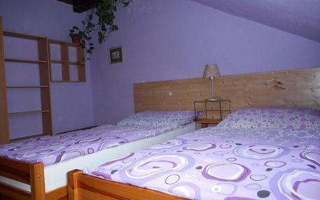 Jižní Čechy: Penzion U Lesa