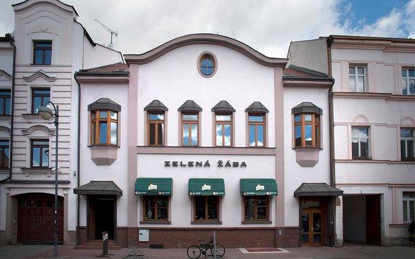 Pardubice, Pardubický kraj: Penzion Zelená Žába