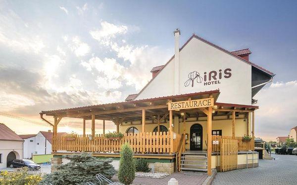 Pavlov, Jihomoravský kraj: Hotel IRIS