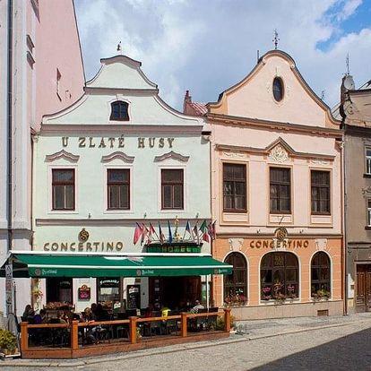 Česká republika, Jižní Čechy, vlastní dopravou na 6 dní polopenze