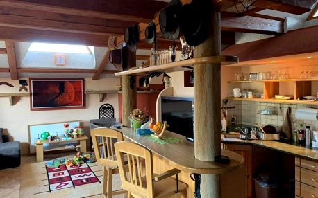 Ubytování pro 4 osoby v luxusním studio Austrálie s kuchyní a krbem přímo na pokoji v Úžicích