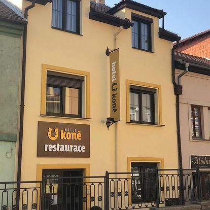 Beroun, Středočeský kraj: Hotel U koně