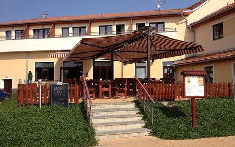 Vyškov, Jihomoravský kraj: Active Wellness hotel U zlaté rybky