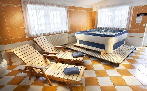 Hotel Akademie Velké Bílovice, Pálava a Slovácko, vlastní doprava, polopenze2