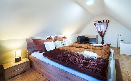 Wellnes balíček 4 noci pro dva v Bluestars Apartments ( možno využít Varyvoucher 2 500 Kč) v Karlových Varech