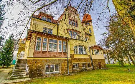 Karlovy Vary u Tržní kolonády v Penzionu Villa Hofman se snídaní a vstupem do Sportcentra Imperial