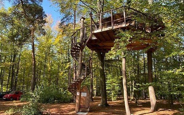 Stromhouse - Ubytování v korunách stromů