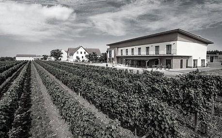 Jižní Morava: Velké Bílovice ve Vinařství Skoupil s degustací 6 vzorků vín, slevou na zapůjčení kol + snídaně