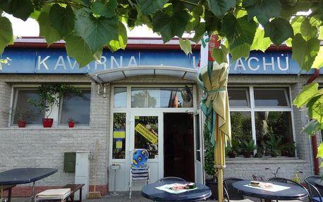 Břeclav, Jihomoravský kraj: Penzion u Machů