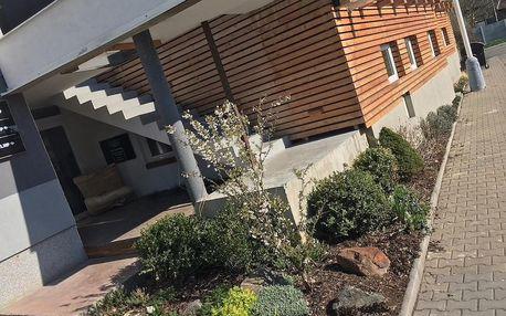 Kladno, Středočeský kraj: Chestnut Island Apartment