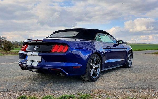 Zapůjčení nadupaného Fordu Mustang Cabrio na 15 minut2