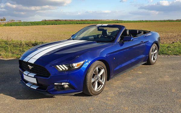 Zapůjčení nadupaného Fordu Mustang Cabrio na 15 minut4