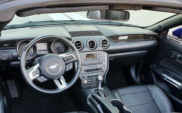 Zapůjčení nadupaného Fordu Mustang Cabrio na 15 minut5