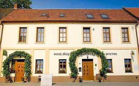 Jižní Morava: Hustopeče v Penzion Herbenka se snídaněmi + večeře, degustace a neomezená konzumace vín