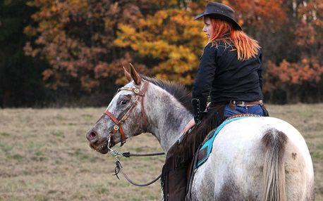 Hodinová vyjížďka na filmových koních pro 1–3 osoby