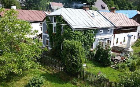 Kašperské Hory, Plzeňský kraj: Opolenec