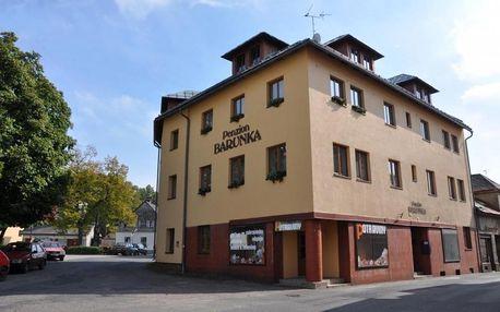 Vysoké nad Jizerou, Liberecký kraj Penzion Barunka