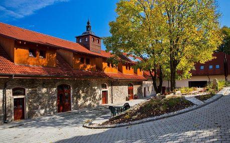 Kašperské Hory, Plzeňský kraj: Rezidence VOGELSANG