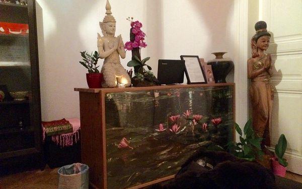 Thajská masáž zad (60 minut)3